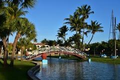 在棕榈树的小桥梁在巴拉德罗角,古巴 图库摄影