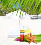 在棕榈树的椰子和鸡尾酒饮料 库存照片