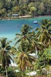 在棕榈树附近的海湾 免版税库存图片