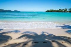 在棕榈树阴影的脚步在完善的热带海滩 免版税库存照片