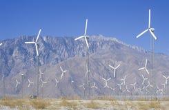 在棕榈泉,加州的风力 库存照片