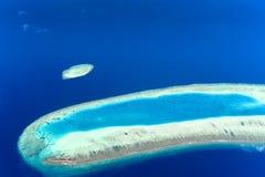在棕榈滩手段上,马尔代夫海岛 库存照片