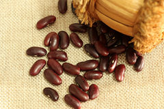 在棕色大袋的红豆或扁豆消散 库存照片
