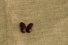 在棕色大袋的红豆或扁豆消散 库存图片