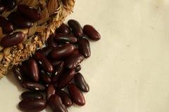 在棕色大袋的红豆或扁豆消散 免版税库存图片