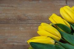 在棕色木板的黄色郁金香 背景,样式,纹理 库存照片