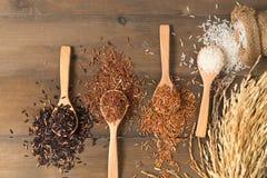 在棕色木backg的米莓果,棕色和泰国红色混杂的米 免版税库存图片
