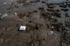 在棕色沙子的污染在海滩纹理。 免版税库存图片