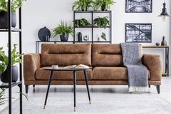 在棕色皮革长椅前面的表与在白色内部的毯子与植物和海报 实际照片 免版税图库摄影