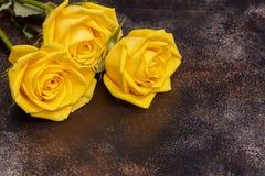 在棕色背景的三朵美丽的黄色玫瑰 免版税图库摄影