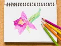 在棕色背景的笔记本和颜色铅笔 库存照片