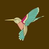 在棕色背景的蜂鸟抽象蓝色翼 库存照片