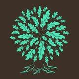 在棕色背景隔绝的橡树剪影 免版税库存照片