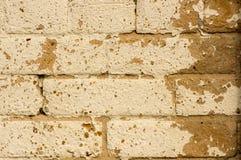 在棕褐色的砖墙上的困厄的米黄油漆 库存照片