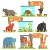 在棚子后的野生动物动物园集合的 免版税库存图片