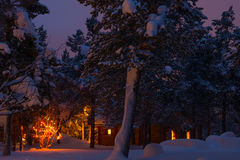 在森林、议院和诗歌选的冬天晚上在树 免版税库存图片