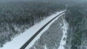 在森林上的寄生虫英尺长度冬天路的 影视素材