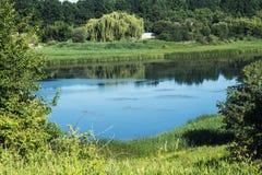 在森林中的湖视图 库存图片