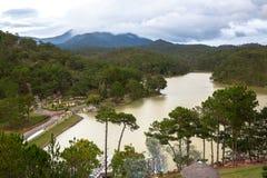 在森林中的美丽的河 免版税图库摄影