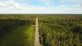 在森林中的高速公路 股票视频