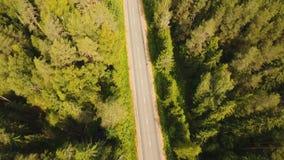 在森林中的高速公路 影视素材