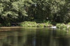 在森林中间的小水坝有两小瀑布的 免版税库存照片