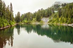 在森林中间的湖 免版税图库摄影
