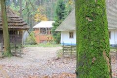 在森林中间的议院 库存照片