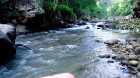 在森林中间的山河,在打横,西爪哇省,印度尼西亚 免版税库存照片
