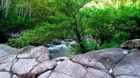 在森林中间的山河,在打横,西爪哇省,印度尼西亚 免版税图库摄影