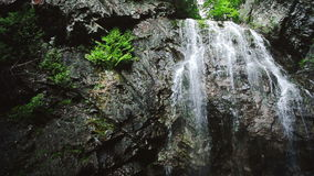 在森林中间的瀑布 股票视频