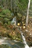 在森林中间的瀑布 库存图片