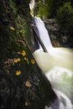 在森林中间的美丽的瀑布 库存照片
