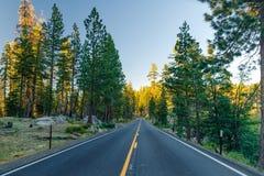 在森林之间的美丽的路在日落期间 在优胜美地国家公园加利福尼亚 库存照片