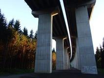 在森林公园Golubinjak附近的Viadukt 库存图片