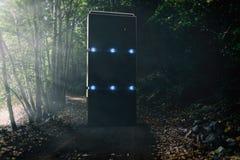 在森林公路中间的奇怪的巨型独石 库存照片