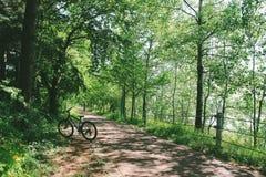 在森林公路的自行车 免版税库存图片