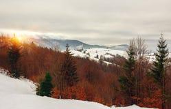 在森林冬天风景的多雪的山的日落 库存照片