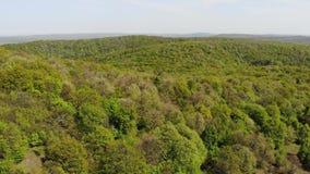 在森林区域- Macin山的顶视图-罗马尼亚,多布罗加 影视素材