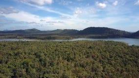 在森林和大山全景后的安静的湖 股票录像