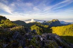 在森林和山的早晨光 库存图片