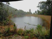 在森林在一个雨天包围的一个农场的一个水坝在罗伯逊,南非 免版税库存照片