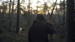 在森林外面的人伐木工人日落的 股票视频