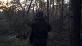 在森林外面的人伐木工人日落的 影视素材