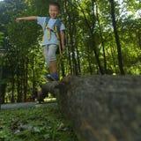 在森林宠爱透视 免版税库存图片