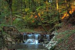在森林小河的瀑布 免版税图库摄影