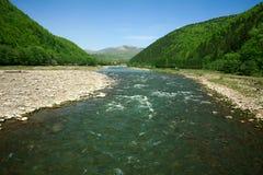 在森林山中的河流程在蓝天背景  免版税库存照片