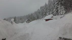 在森林山小屋的雪风暴 股票录像