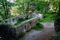 在森林掩藏的中世纪大厦的废墟 库存照片