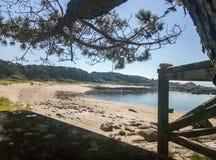 在森林旁边的维尔京海滩 免版税图库摄影